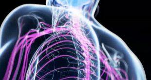 Ημερίδα για τις Πολυνευροπάθειες από το Επιστημονικό Τμήμα Νευρολογικής Φυσικοθεραπείας του ΠΣΦ
