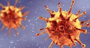 """Αυτο-προστασία του οργανισμού: Τα Τ-λεμφοκύτταρα """"θυμούνται"""" προηγούμενες λοιμώξεις από κορονοϊούς"""