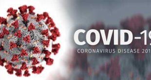 Από πού προήλθε ο COVID-19; Πώς θα κινηθεί η έρευνα του ΠΟΥ